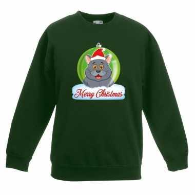Foute kersttrui merry christmas grijze kat / poes kerstbal groen kind